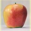 08-ambrosia_apples-nvdc_054