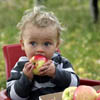 Babies and Ambrosia apples