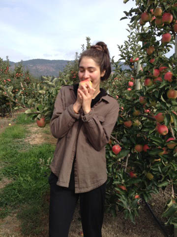 eating Ambrosia apple