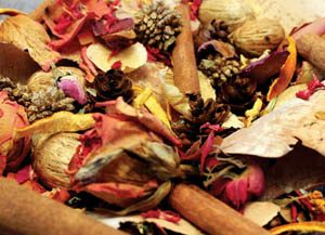 Ambrosia apples potpourri