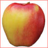Ambrosia apples & acid reflux