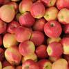 Ambrosia apples BC