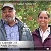 Ambrosia apple growers