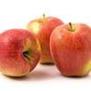 Ambosiia apples annd stress