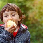 Ambrosia apples